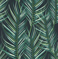 Graham and Brown Palm Leaves Green 100558 Wallpaper